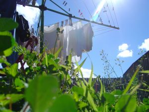Line drying and not a tumble dryer is the ecological way to dry your laundry
