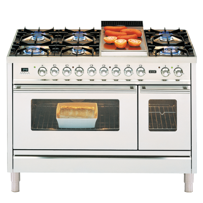 A typical Elba range cooker